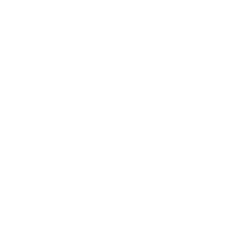 BIG TROUBLE SOCIETY