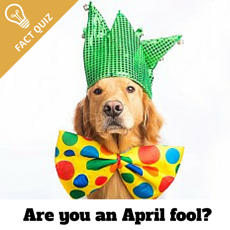 Are you an April fool-.png