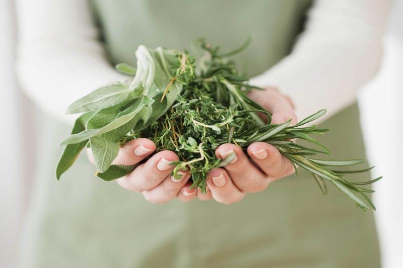 Handful-Herbs.jpg