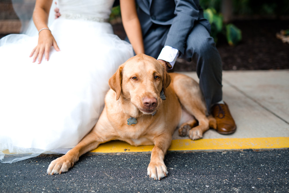 Bride and Groom -55.jpg