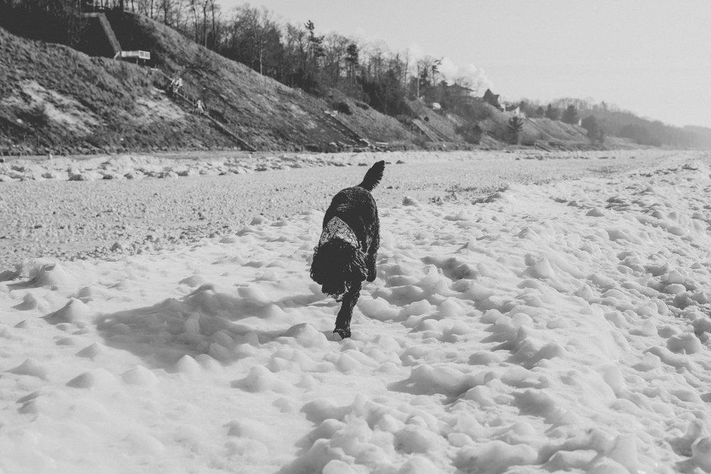 beach blog-13.jpg