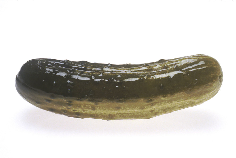 largepickle.jpg
