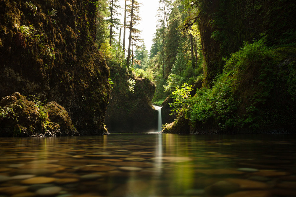(click image to enlarge)   Punchbowl Falls [SOLD] | 20x30 | high gloss metal print with hand made shadow mount  Columbia River Gorge, Oregon