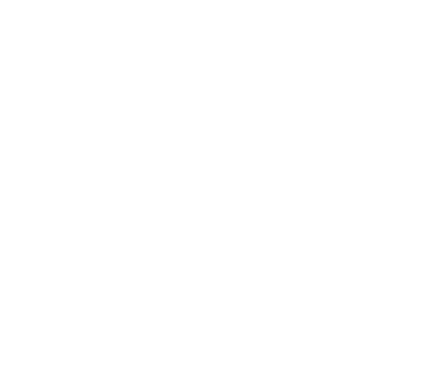 Logo_LC_2017_weiss.png