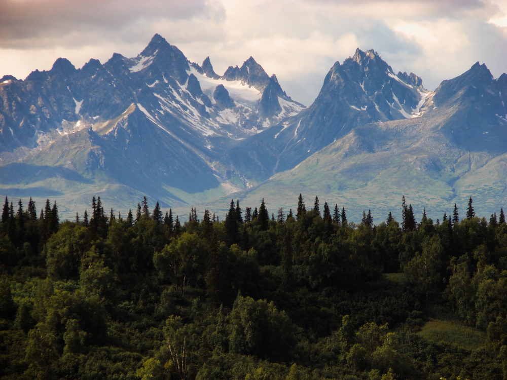 Alaska-mountain-and-forest-free-license-CC02.jpg