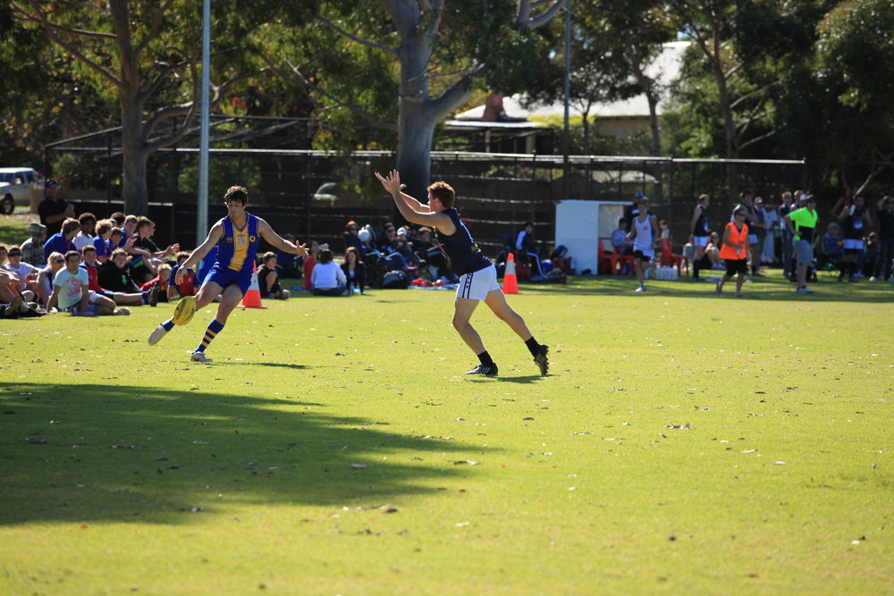 Fig 7: Organised sport being played on a sport field