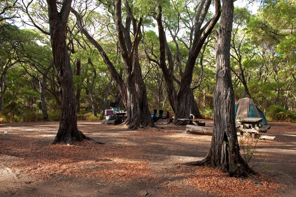 Fig 40: Contos camping site within the Leeuwin- Naturaliste National Park in WA.