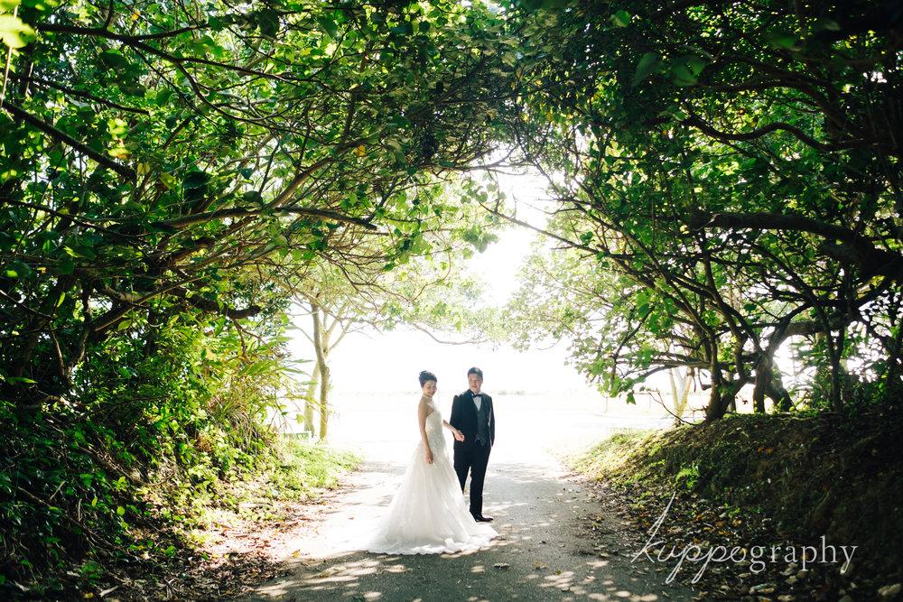 沖縄の森でフォトウェディング