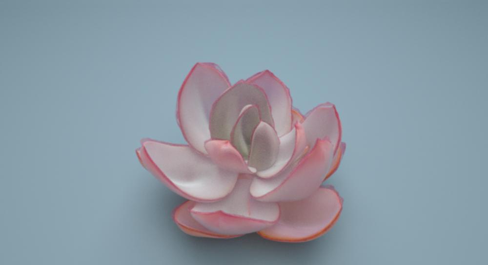 3D Pink Magenta.PNG