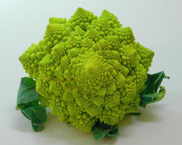 fractal_food_01