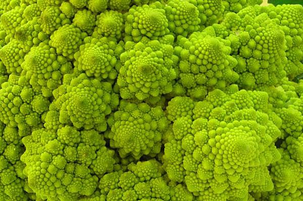 fractal_food_02