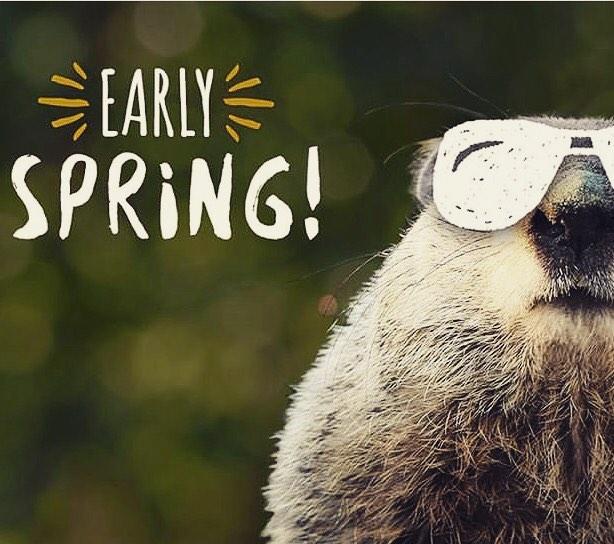 🙌🏼 Groundhog Day!