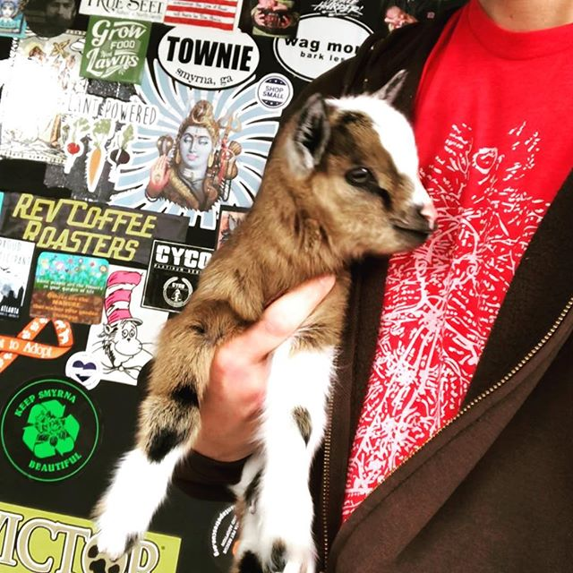 Good people helping good people. @ourgivinggarden just got 3 baby goats and @get_your_goat_rentals was happy to share some expertise.