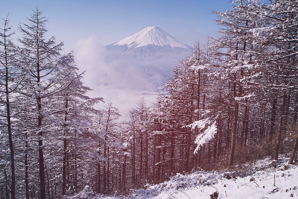 When you reach the Shindou-Touge pass you'll get to this point. Keep going down the path and you'll see a sign that has a better vantage point of Lake Kawaguchiko and Mt. Fuji.