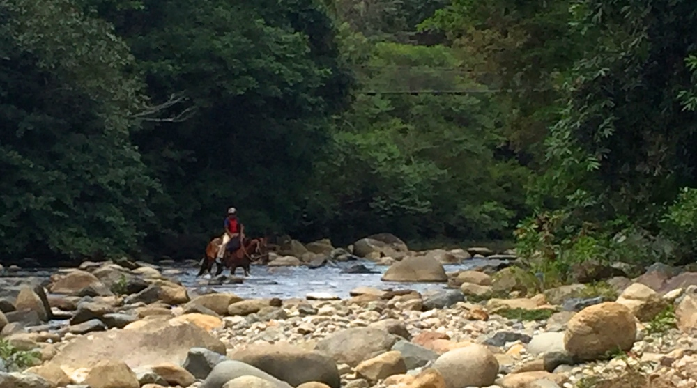 After my swim, I saw this guy on a horse crossing the river.