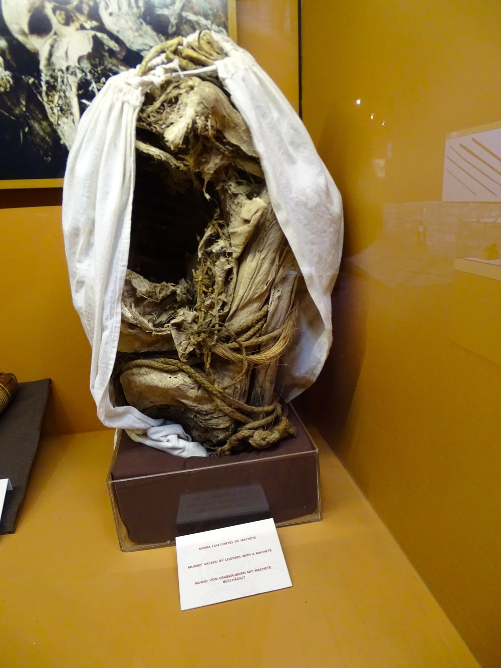 A vandalized mummy - I found out moments later that no photos were allowed, so we don't have one of an undamaged one, sorry.