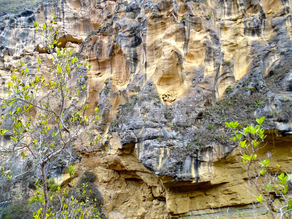 The cliff face eroded in interesting ways, creating scoop pockets that then filled with rubble.