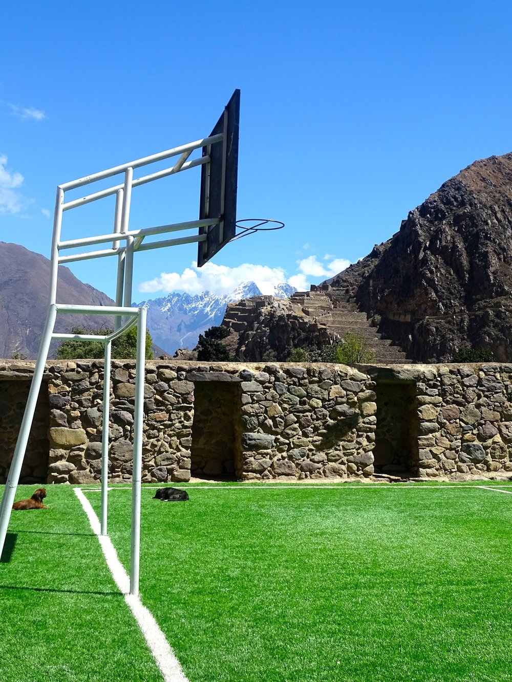 Creative combination of a basketball hoop and a football goal.  Not sure how well the ball bounces on the fake turf.