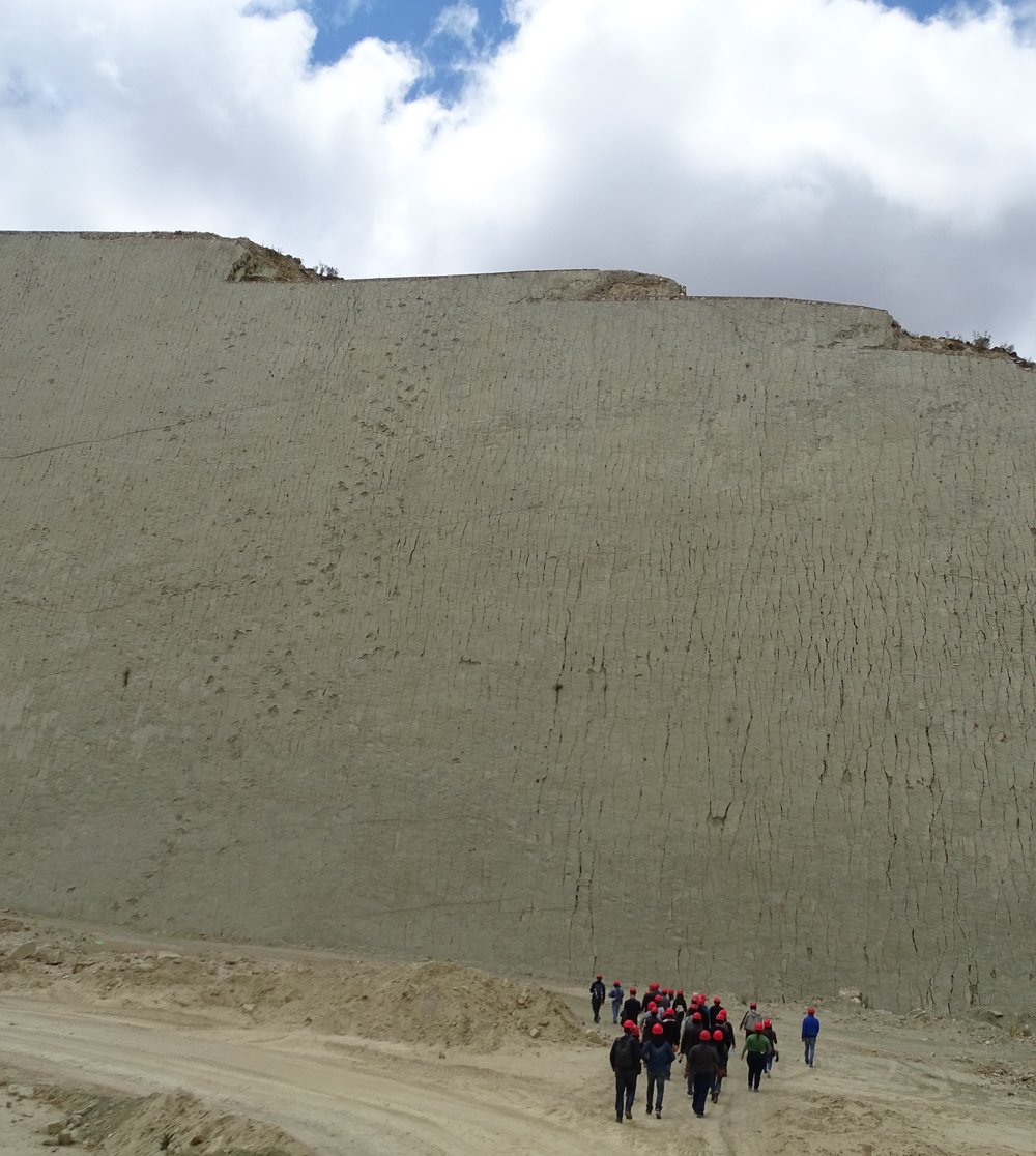 The wall, 1500 meters long and over 100 meters high, is covered with over 5,500 fossil dinosaur tracks.