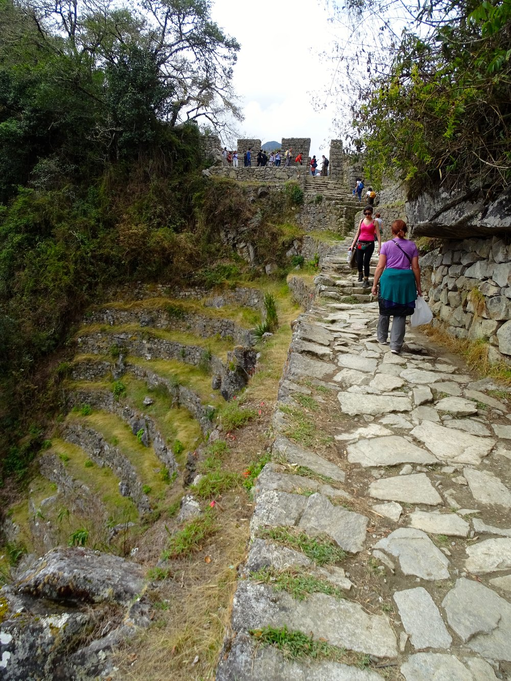 The Inca trail approaching the Sun Gate ahead.  This trail was built to last!
