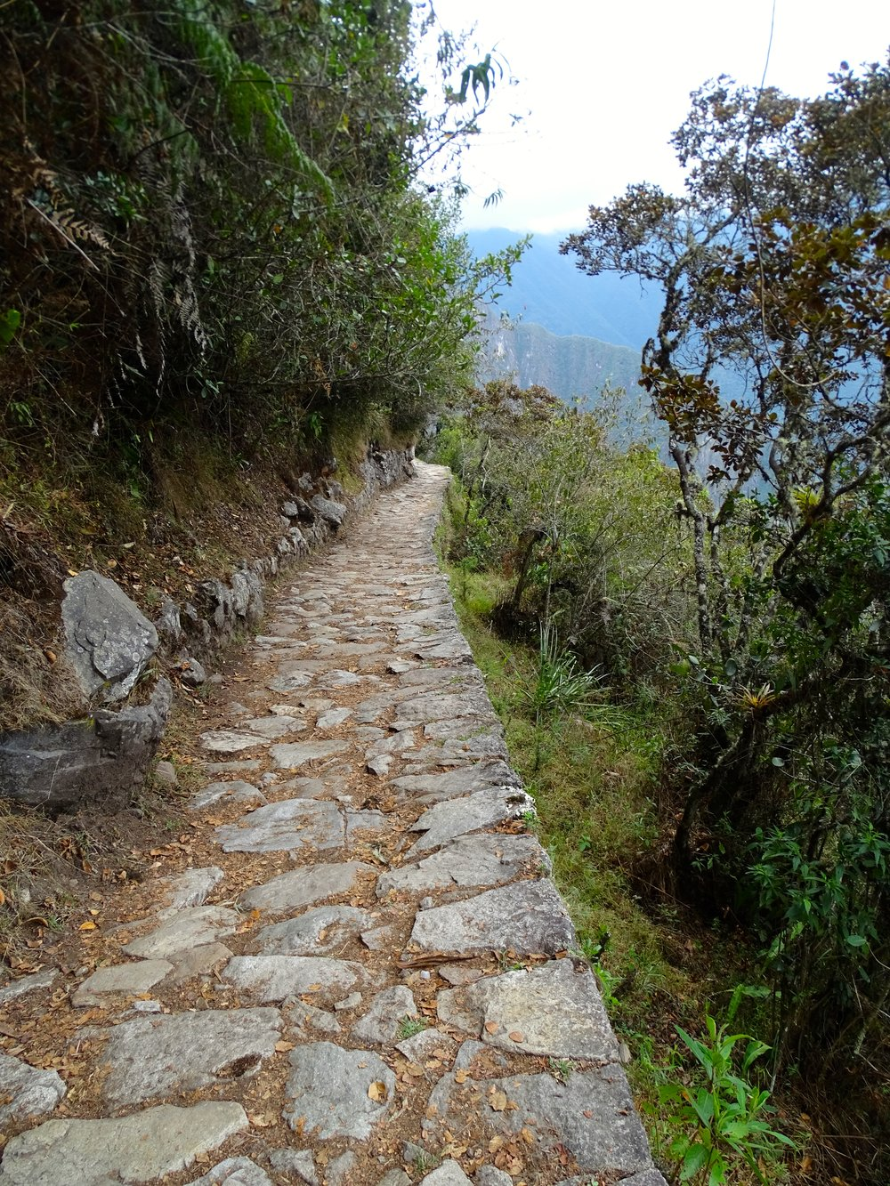 Another view of the Inca Trail, and how well built it is.