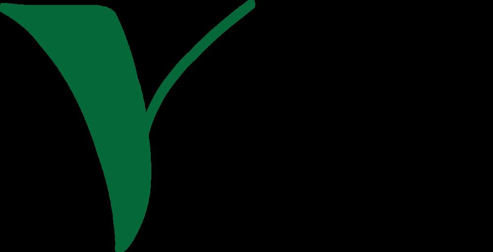 3ad28bb1af50-Vultus_logo.png