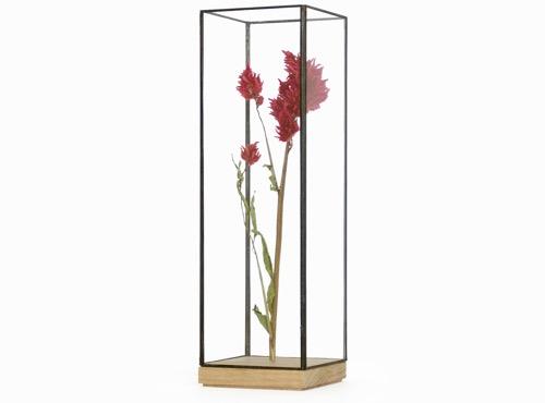 Showcase Long |Vaso vetro e ferro | 1012Terra | Spazio Materiae | Essiccare fiori, fiori secchi | Napoli