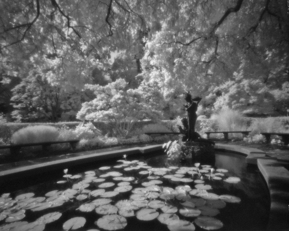 Central Park #6