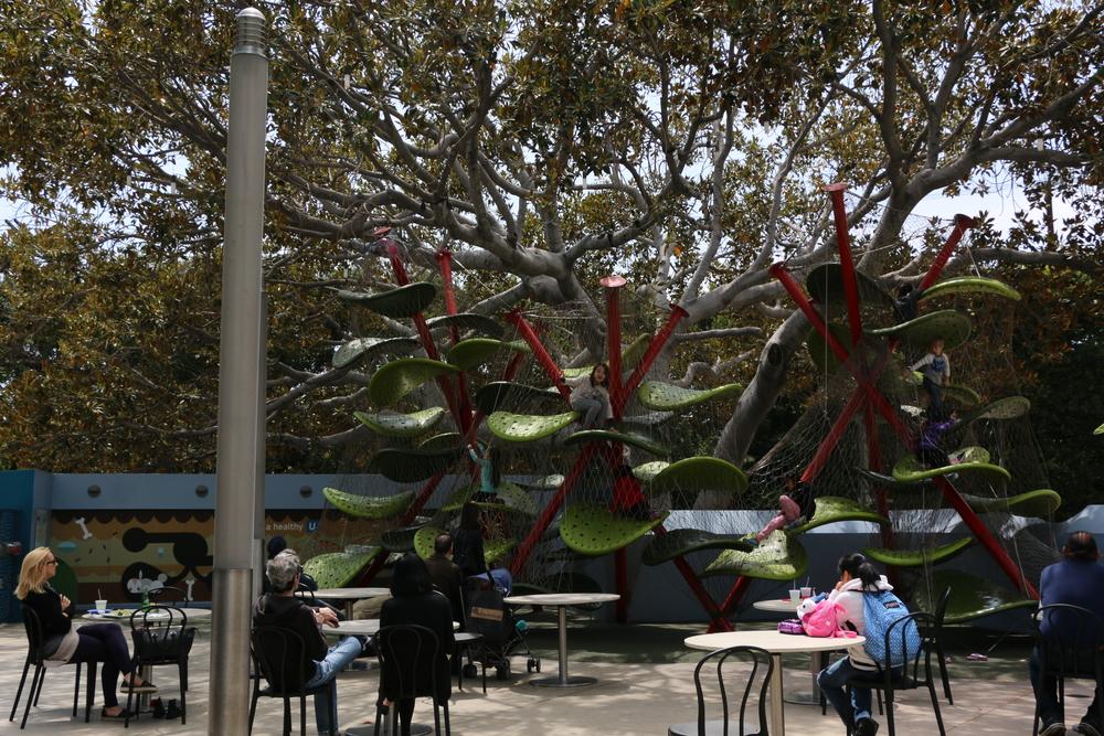 建物の目の前には、こんな木登りが楽しめる遊具も!