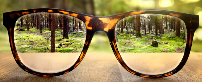 see-forest-clearly-through-glasses.jpg