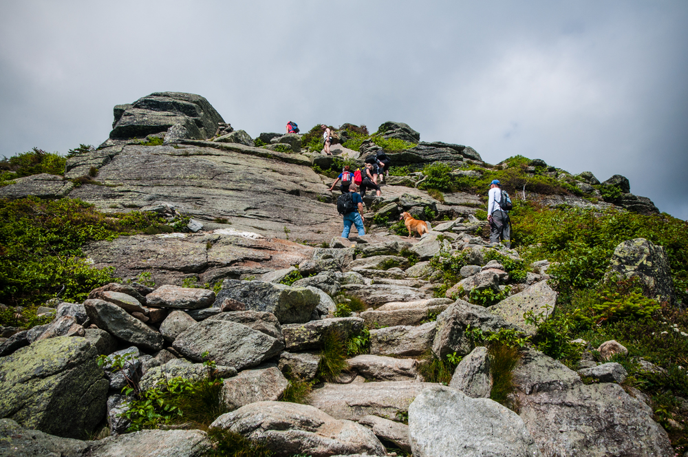 Looking up at a group of hikers as we approached Lion's Head. We had the pleasure of meeting the dog you see and his buddy (the guy in the white shirt following him). They were also from Maine. (Click to enlarge image)