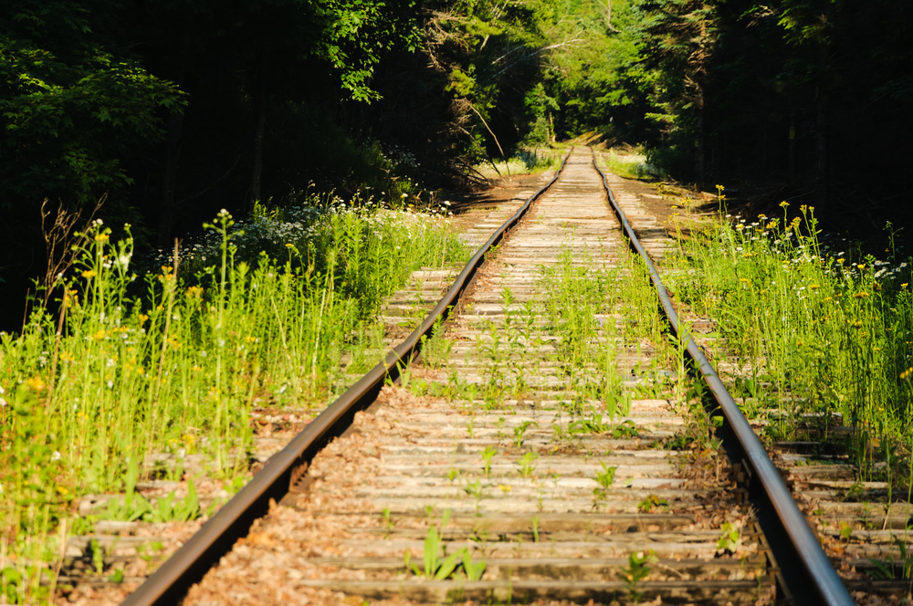 An evening walk along the railroad tracks near my home base in Maine.