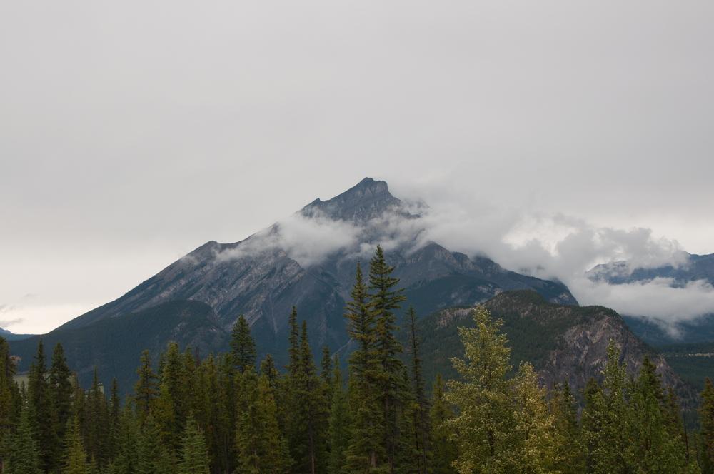20120909_CanadianRockies_BanffSulpherMtn__DSC1616.jpg