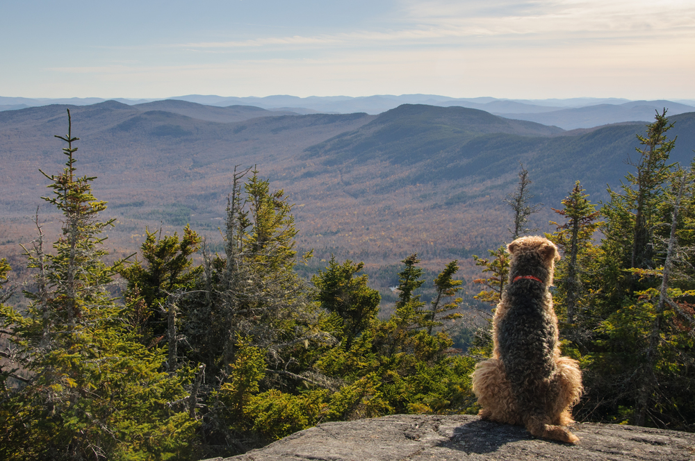 Tumbledown Mountain, Maine, USA October 2015