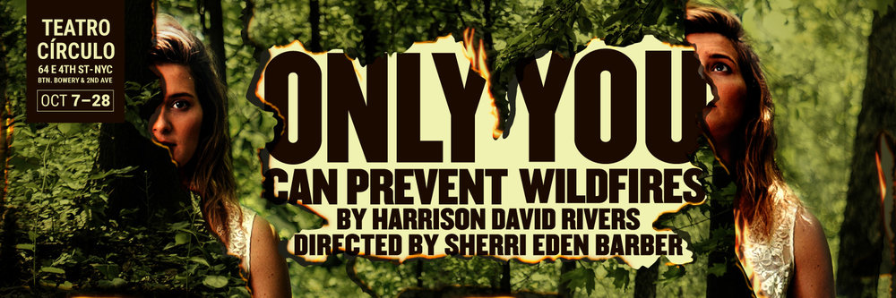 Only You Can Prevent Wildfires by Harrison David Rivers. Conceived and directed by Sherri Eden Barber