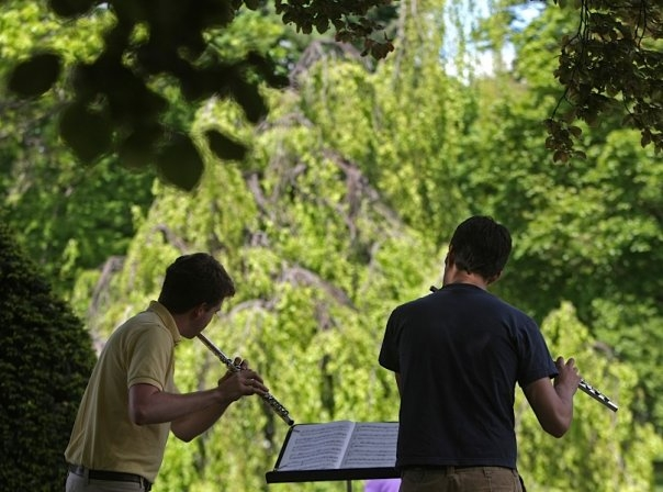 Mozart Arias in the Boston Public Gardens