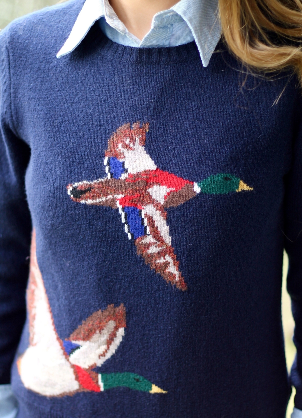Duck Sweater from  Brooks Brothers