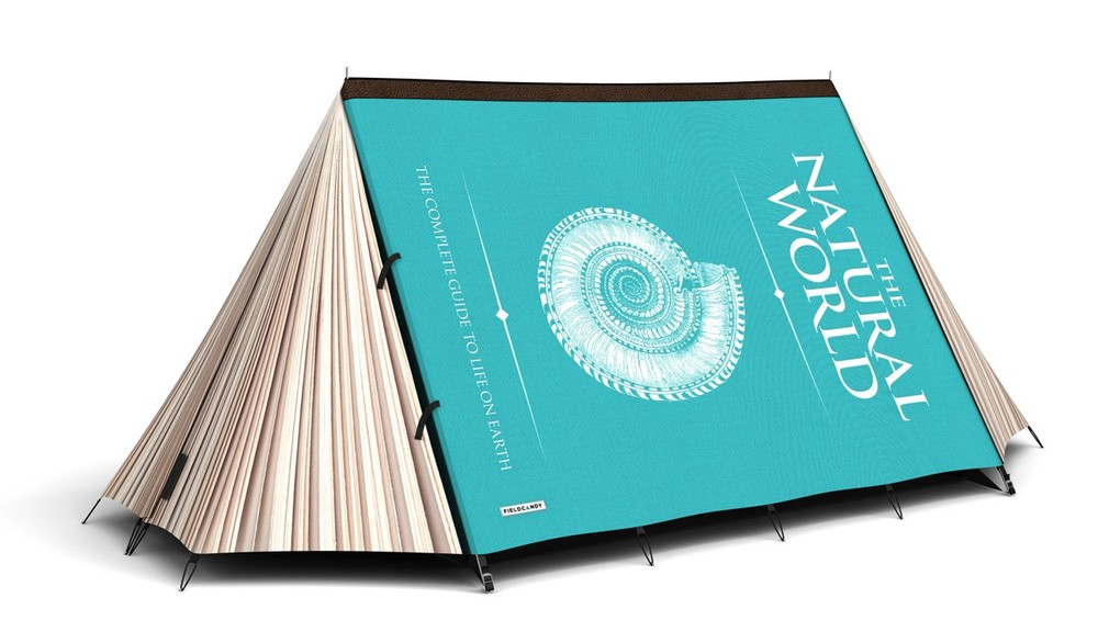 fieldcandy.com