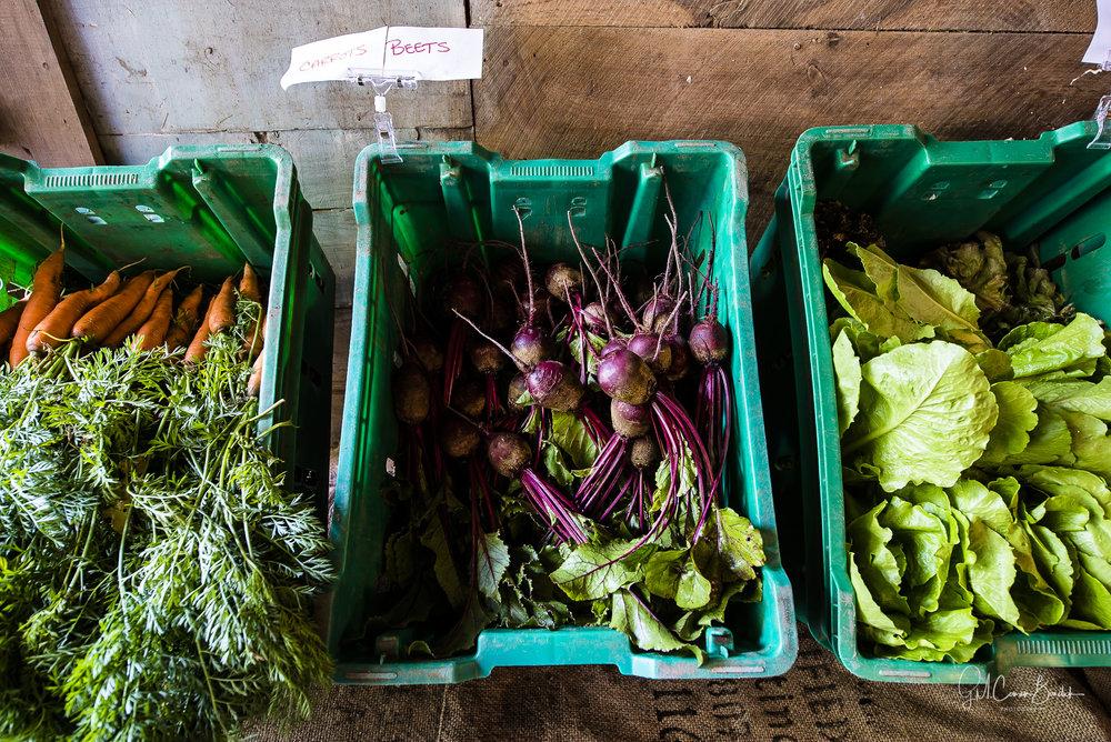 Saltbox Farm-55.jpg