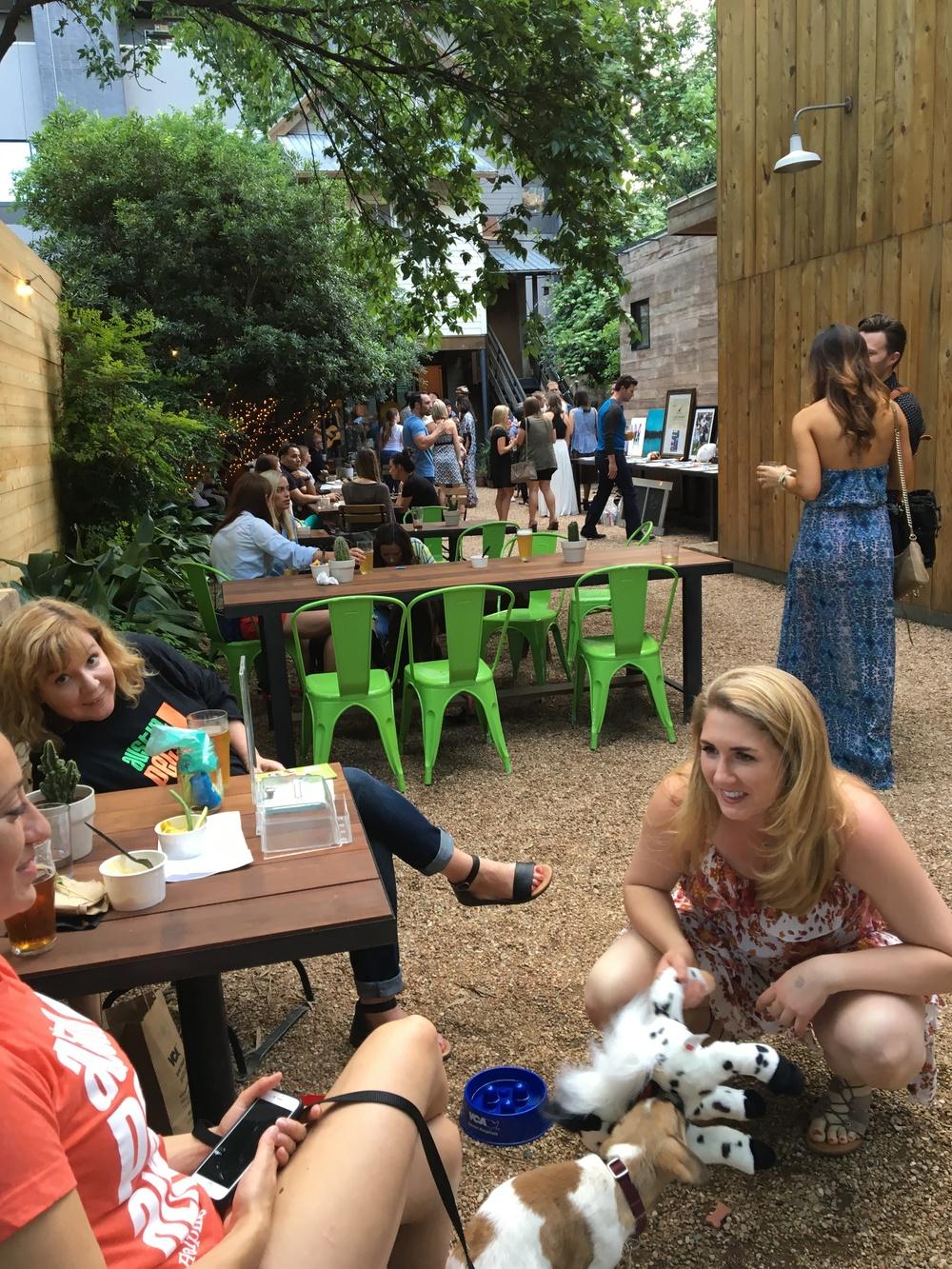 Austin Pets Alive! Fundraiser, Spring 2016