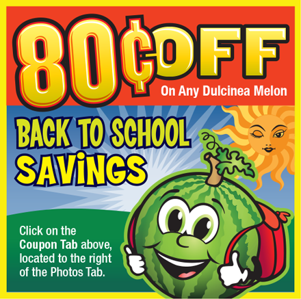 Coupon art was coordinated with the look and theme of the Facebook page for that week. This example was placed during the Back To School theme week. Four sets of ad art were created throughout the campaign.
