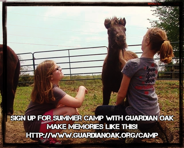 Campers will learn how to befriend and care for horses like Kiwi!