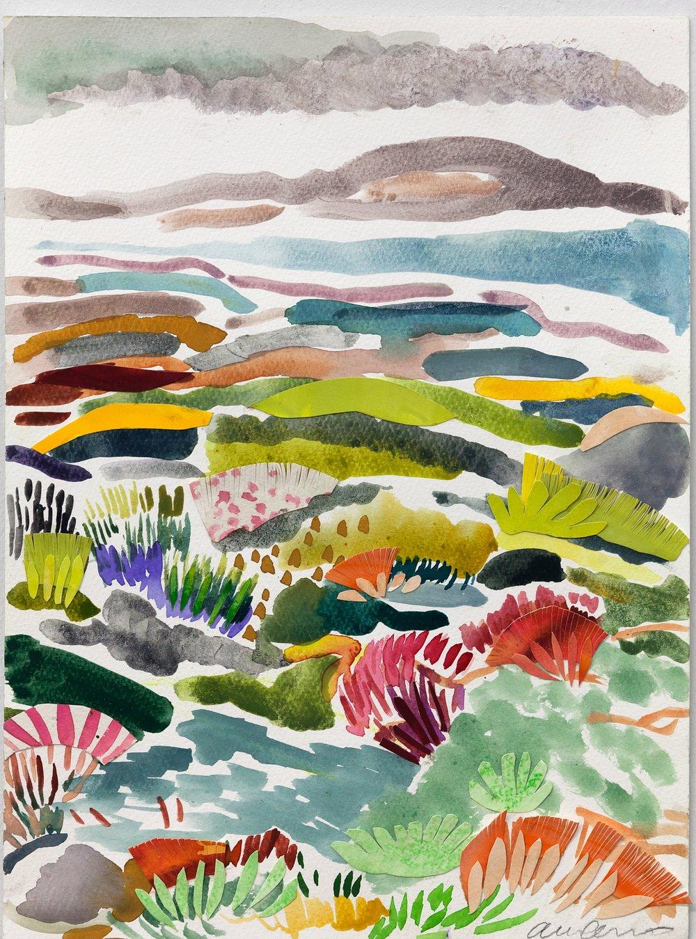 Fynbos Landscape i