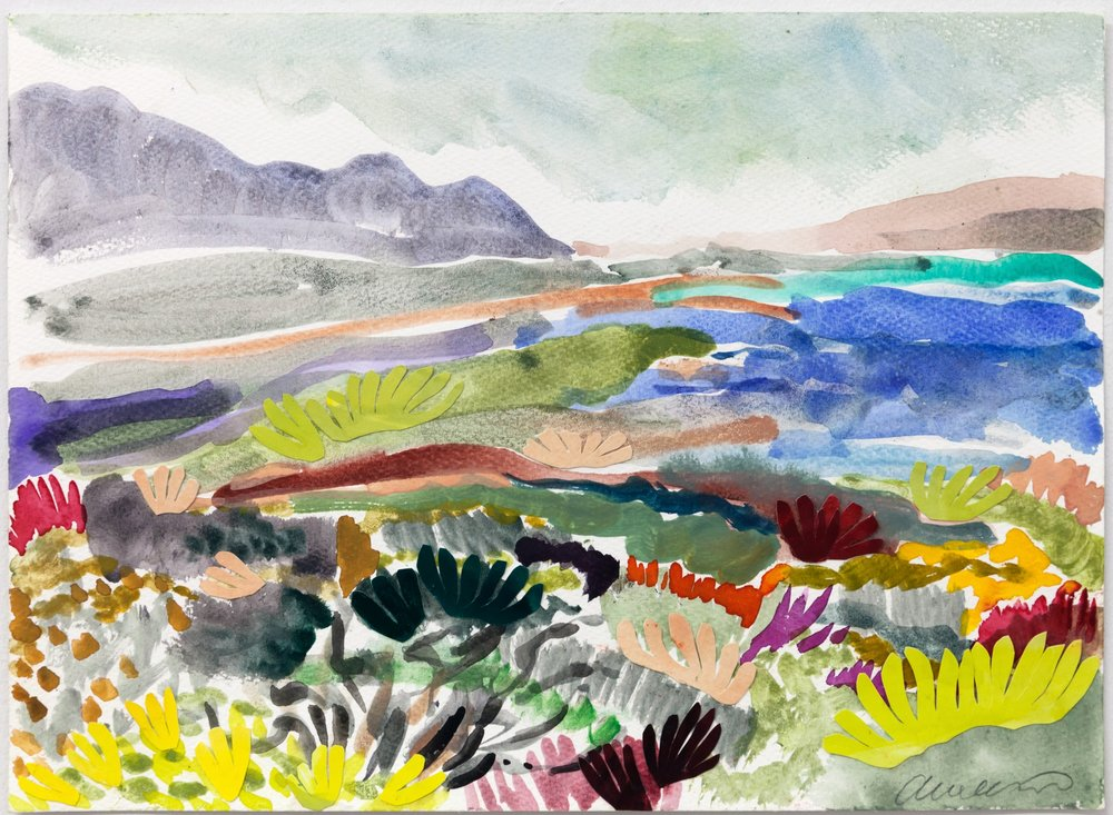 Fynbos Landscape ii