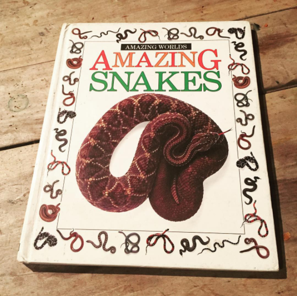 Amazing Snakes.PNG