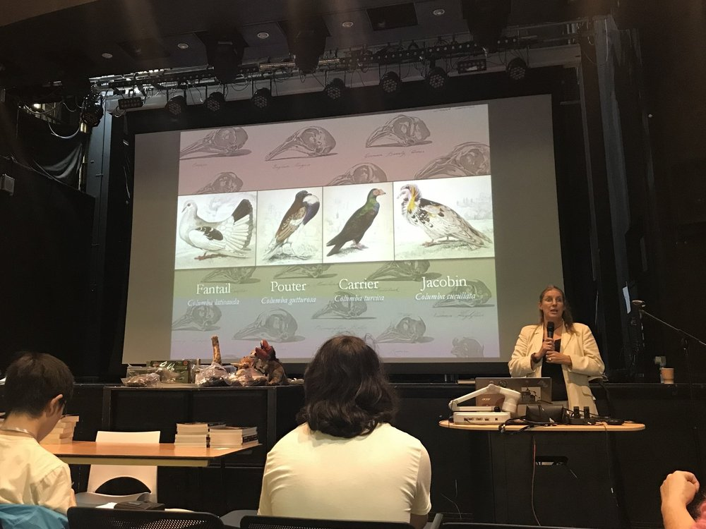 Katrina van Grouw presenting her talk on her latest book 'Unnatural Selection: Evolution at the Hand of Man' | Credit: Talita Bateman