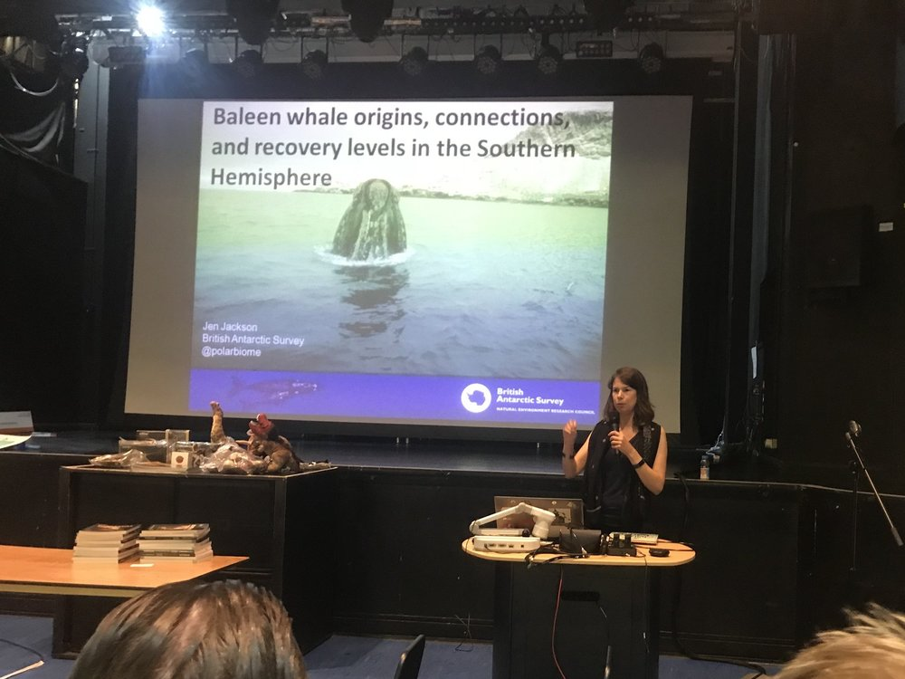 Jen Jackson talking about Baleen whale origins, connections and recovery levels in the southern hemisphere. | Credit: Talita Bateman