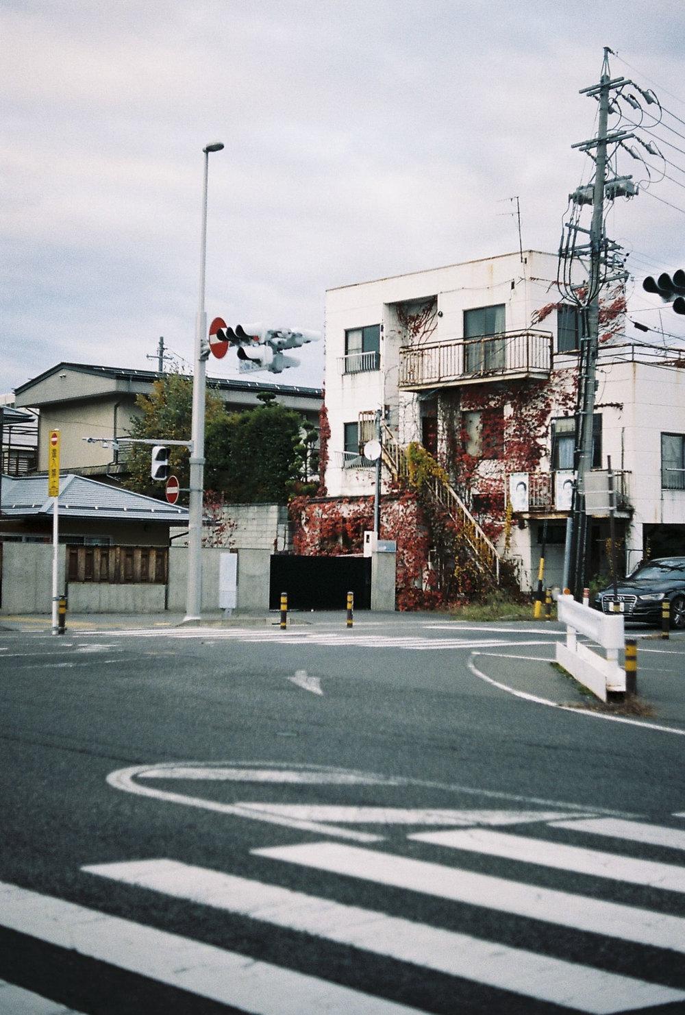 BDAY_LA_JAPAN_SNAP_LQ_209.JPG