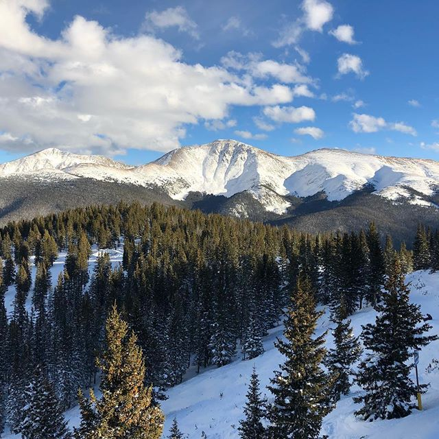 Fresh snow and blue bird day here at #winterpark for the win! #winterpark #CO