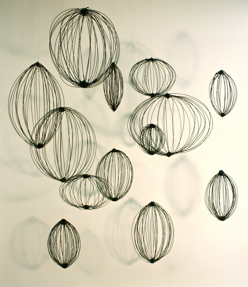 Seed Installation, 2013, wire, dimensions vary